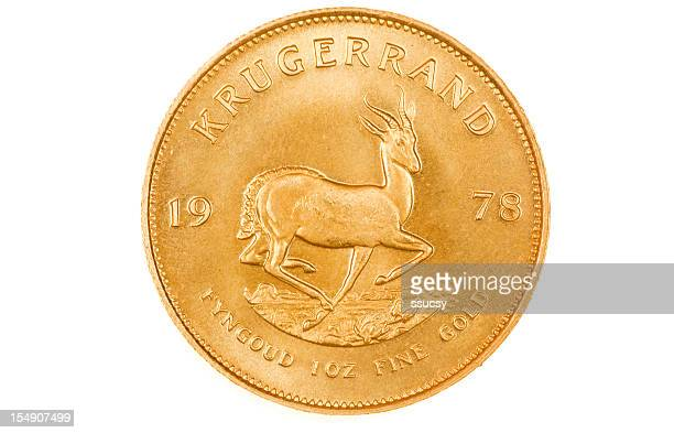 Kruggerand Gold Investment Coin Reverse, XXL, on White Background