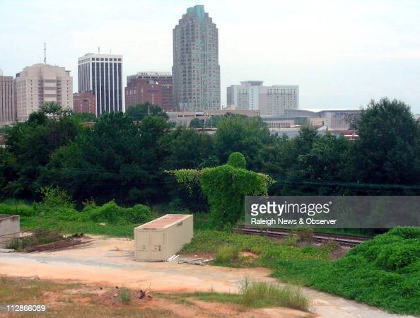 Kudzu vines grow in a shape some refer to as the 'Kudzu Jesus' near the downtown skyline in Raleigh North Carolina