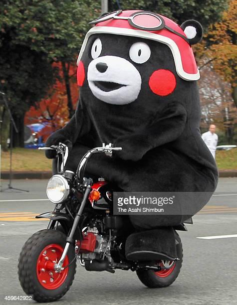 Kumamoto prefecture's official mascot 'Kumamon' rides on Honda Motor Co's 'Monkey' Kumamon version at their Kumamoto factory on November 25 2014 in...