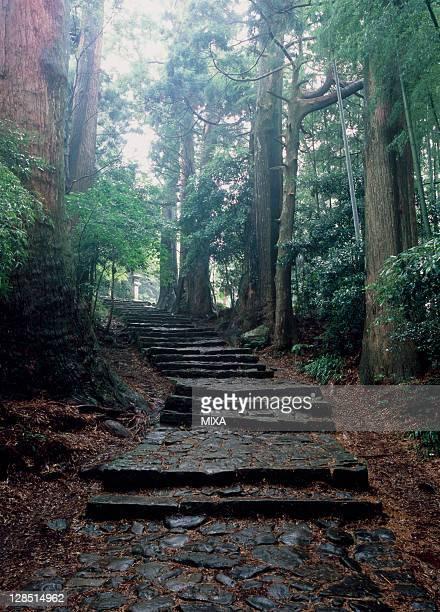 Kumano Kodo, Nachikatsuura, Higashimuro, Wakayama, Japan