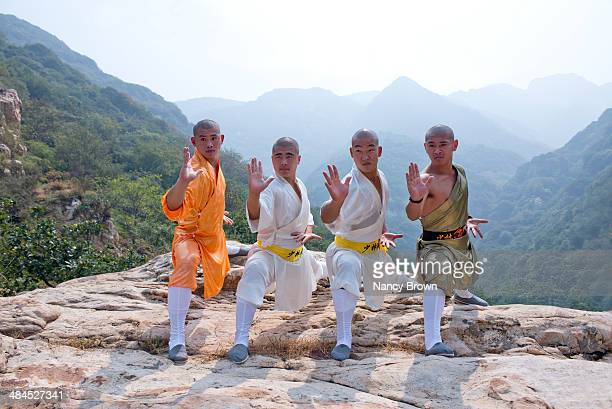 Kung Fu Experts on Song Mt. in Henan China.
