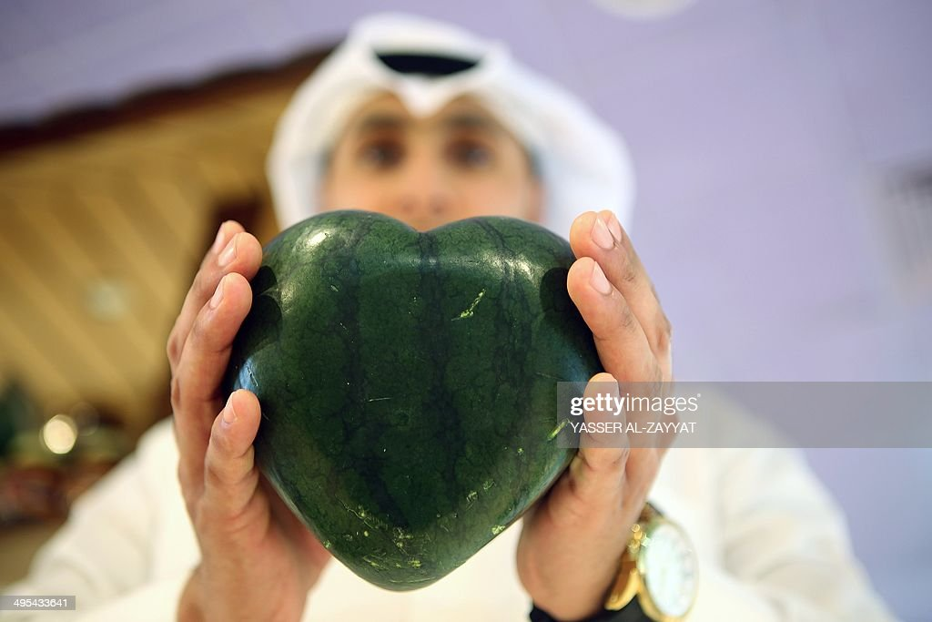 A Kuwaiti man holds a heart-shaped watermelon at a main supermarket in Kuwait City on June 3, 2014. The rare fruit, which is imported from Japan, is sold for 99 Kuwait dinars (USD 350). AFP PHOTO/YASSER AL-ZAYYAT