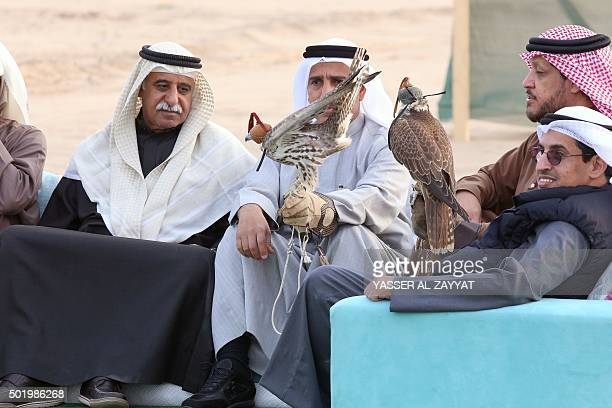 Kuwaiti men sit with falcons during a training session in alSalmi district 120 kms west of Kuwait City on December 19 2015 in preparation for a...