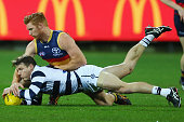 Kyle Cheney of the Crows and Lincoln McCarthy of the Cats compete for the ball during the round 18 AFL match between the Geelong Cats and the...