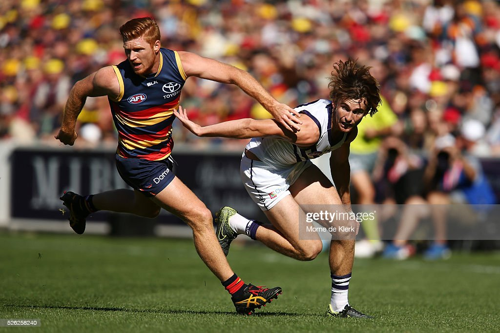Kyle Cheney of the Crows competes for the ball with Connor Blakely of the Dockers during the round six AFL match between the Adelaide Crows and the Fremantle Dockers at Adelaide Oval on April 30, 2016 in Adelaide, Australia.