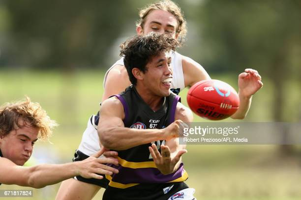 Kyle Clarke of the Bushrangers handballs during the round four TAC Cup match between the Northern Knights and the Murray Bushrangers at RAMS Arena on...