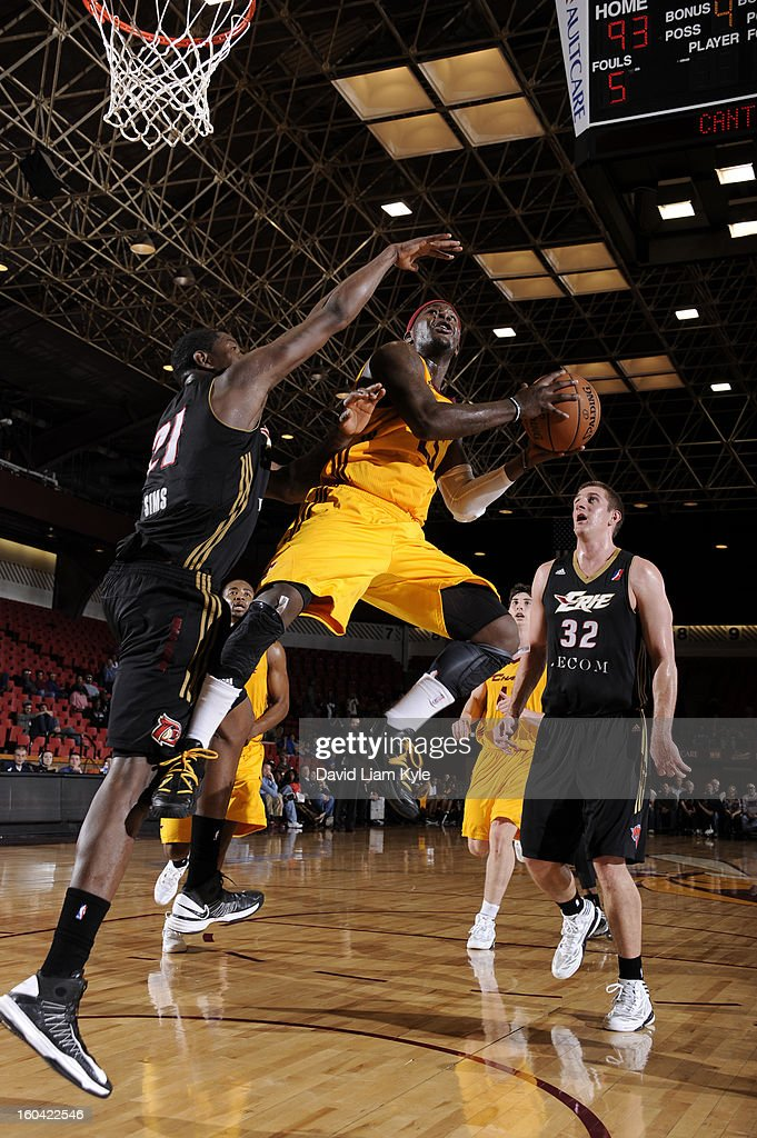 Kyle Gibson #22 of the Canton Charge drives to the hoop against <a gi-track='captionPersonalityLinkClicked' href=/galleries/search?phrase=Demetri+McCamey&family=editorial&specificpeople=4787987 ng-click='$event.stopPropagation()'>Demetri McCamey</a> #8 of the Erie BayHawks at the Canton Memorial Civic Center on January 30, 2013 in Canton, Ohio.