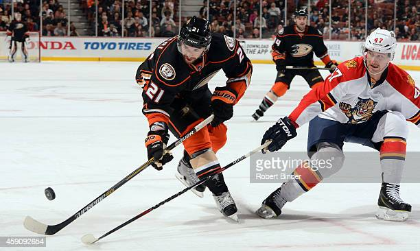 Kyle Palmieri of the Anaheim Ducks controls the puck with Colby Robak of the Florida Panthers defending on November 16 2014 at Honda Center in...