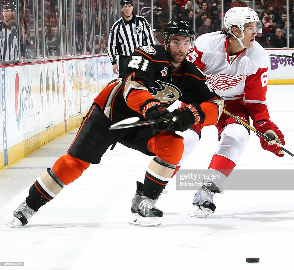 Kyle Palmieri #21 of the Anaheim Ducks skates against Danny DeKeyser #65 of the Detroit Red Wings on January 12, 2014 at Honda Center in Anaheim, California.