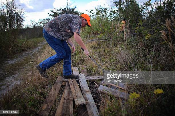 Kyle Storch hunts for python's in the Florida Everglades on the first day of the 2013 Python Challenge on January 12 2013 in Miami FloridaThe Florida...