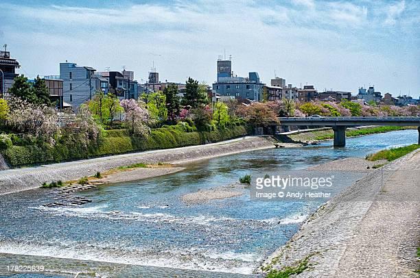 Kyoto's Kamogawa River from the Shijo Bridge
