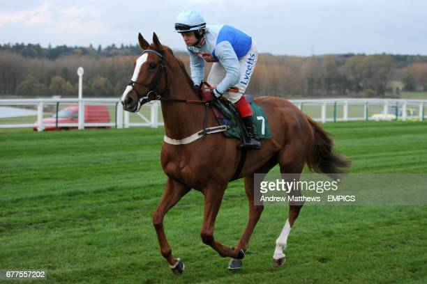 La Belle Doyenne ridden by Robert Thornton going to post for the British Stallion Studs Supporting British Racing EBF 'Junior' Fillies' Standard Open...