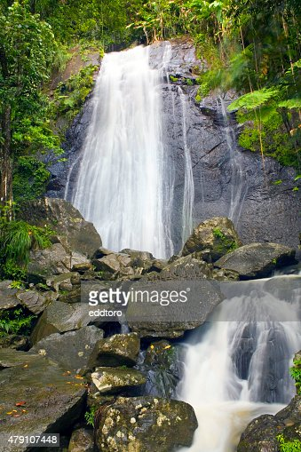 La Coca Falls El Yunque : Stock Photo