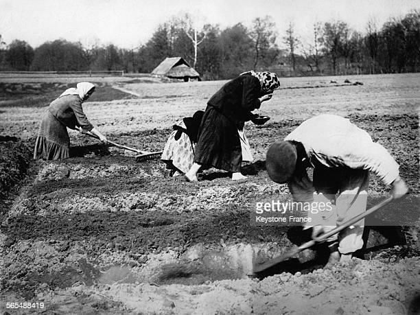 La femme au centre prend les graines de blé dans sa bouche et les recrache de droite à gauche comme la coutume le veut en Lituanie
