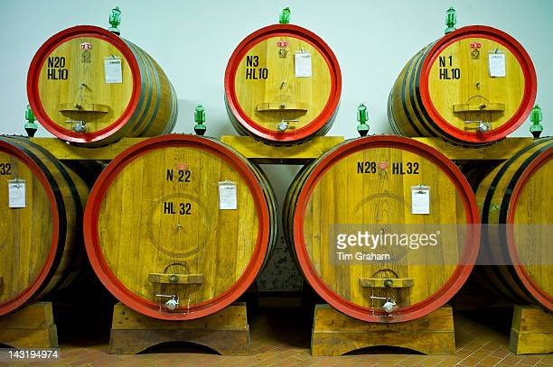 La Fornace Brunello di Montalcino wine stored in barrique barrels at the wine estate of La Fornace in Val D'Orcia Tuscany Italy