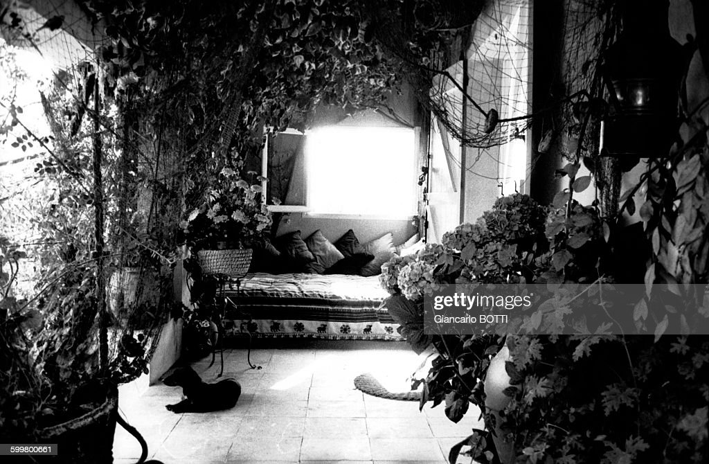 Brigitte bardot getty images - Maison brigitte bardot ...