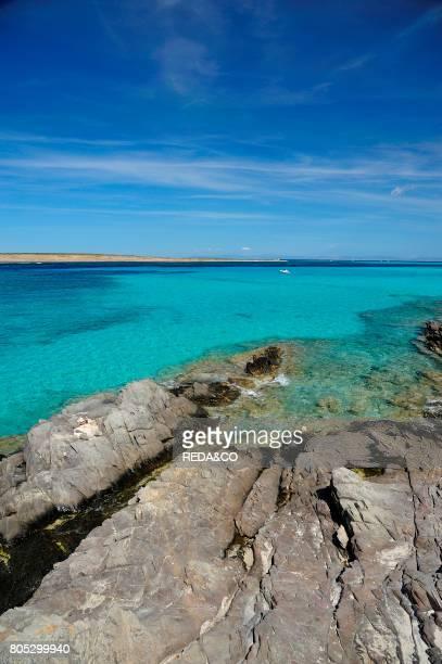 La Pelosa beach Stintino Sardinia Italy Europe