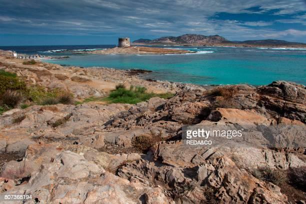 La Pelosa beach Stintino Sassari Sardinia Italy Europe