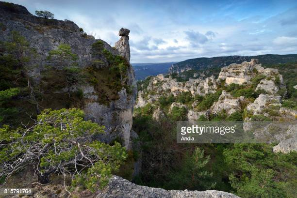 La RoqueSainteMarguerite blockfield 'chaos de MontpellierleVieux' View of the blockfield and the landscape of the limestone plateau of Causse Noir...