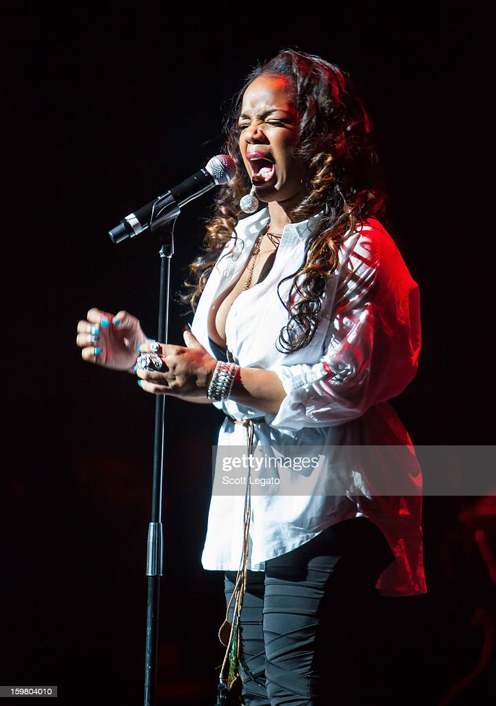Laala James performs in concert for A Night of NeoSoul at Detroit Opera House on January 20, 2013 in Detroit, Michigan.