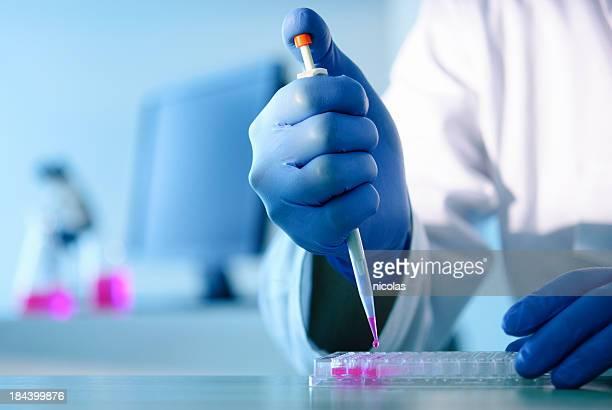 Experiência de laboratório