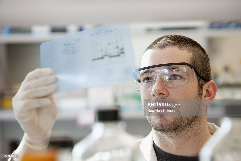 lab technician looking at DNA sequencing gel : Stock Photo