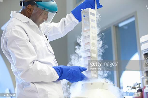 Lab technician pulls samples from liquid nitrogen