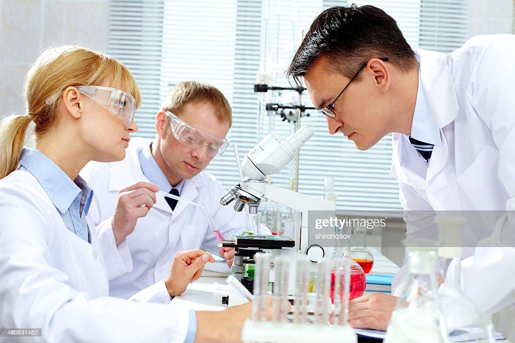 Laboratory study : Stockfoto