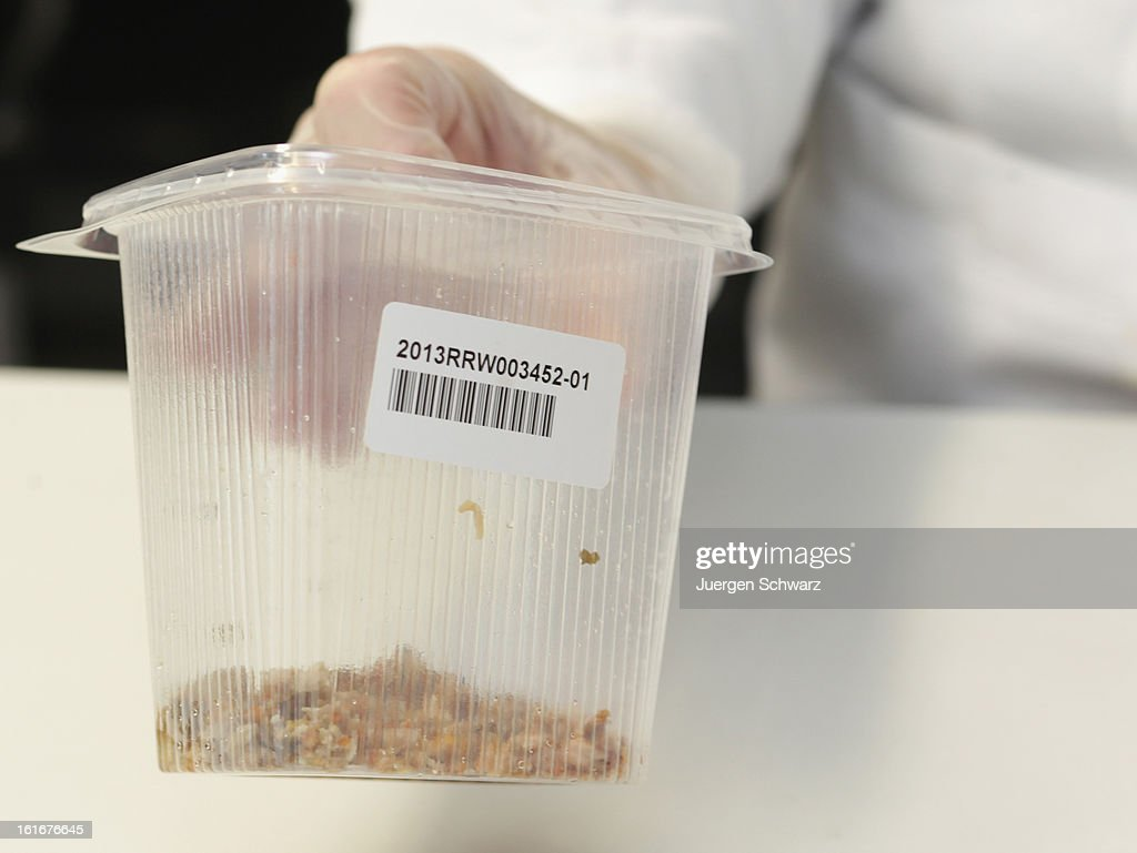 A laboratory technician at the Rhein-Ruhr-Wupper Chemical and Veterinarian Analysis Agency (Chemisches-und Veterinaeruntersuchungsamt Rhein-Ruhr-Wupper) displays extracted meat from a package of ready-made lasagne to check the contents for possible horsemeat on February 14, 2013 in Krefeld, Germany. Following the discovery of horsemeat in lasagne and other products labeled to only have beef content in supermarkets in Great Britain, authorities in countries across Europe are testing for possible mislabeling of products in their own countries. In Germany investigators have confirmed at least one case in the state of North-Rhine Westphalia.