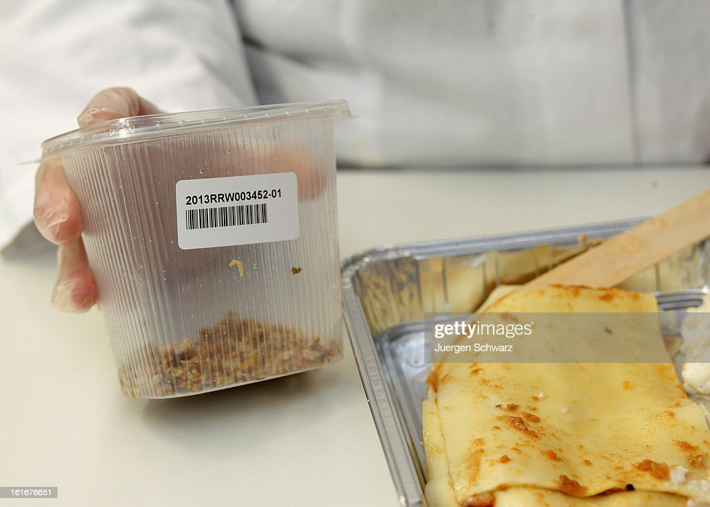 A laboratory technician at the RheinRuhrWupper Chemical and Veterinarian Analysis Agency extracts a sample from a package of readymade lasagne to...