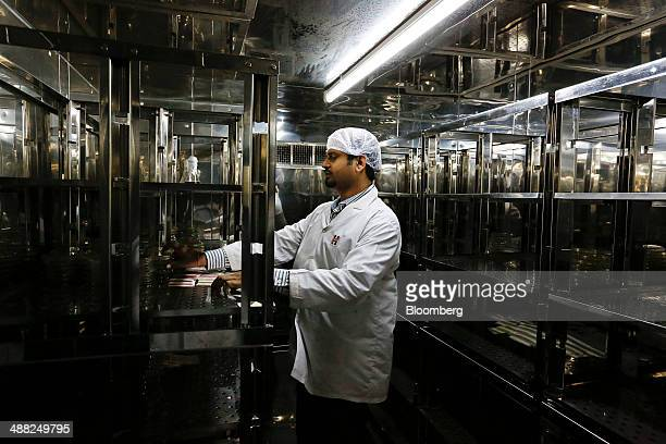 A laboratory technician checks pathogen samples being grown for testing in a laboratory of the research development unit at the Himalaya Drug Co...