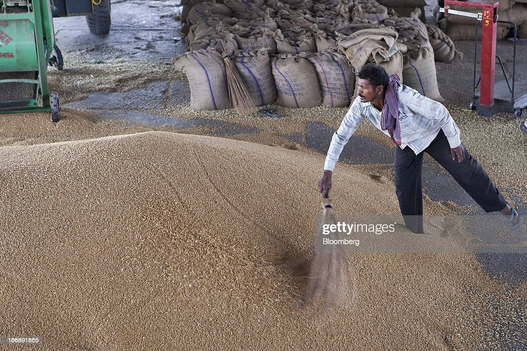 A laborer cleans wheat with a broom at a grain market in the district of Jalandhar in Punjab, India, on Tuesday, April 16, 2013. Wheat harvest in India, the second-biggest grower, may reach a record for a sixth straight year after farmers increased use of high-yielding seeds and winter rains boosted crop prospects, a state-run researcher said. Photographer: Prashanth Vishwanathan/Bloomberg via Getty Images