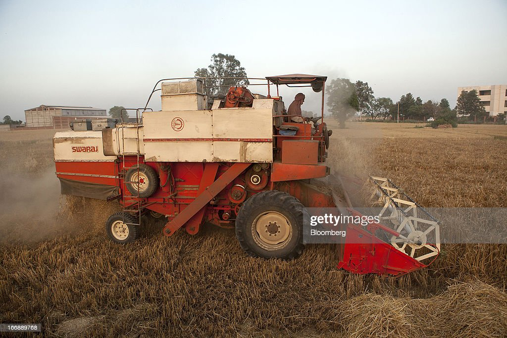 A laborer harvests wheat with a Punjab Tractors Ltd. Swaraj 8100 combine harvester in the district of Jalandhar in Punjab, India, on Monday, April 15, 2013. Wheat harvest in India, the second-biggest grower, may reach a record for a sixth straight year after farmers increased use of high-yielding seeds and winter rains boosted crop prospects, a state-run researcher said. Photographer: Prashanth Vishwanathan/Bloomberg via Getty Images