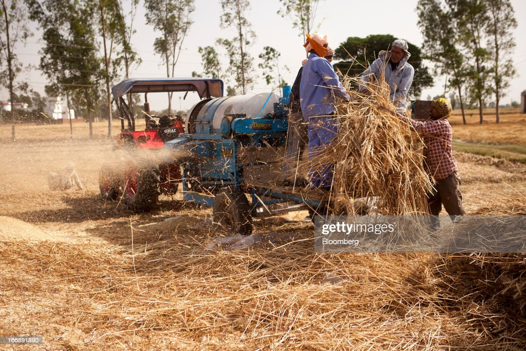 Laborers harvest wheat in the district of Jalandhar in Punjab, India, on Tuesday, April 16, 2013. Wheat harvest in India, the second-biggest grower, may reach a record for a sixth straight year after farmers increased use of high-yielding seeds and winter rains boosted crop prospects, a state-run researcher said. Photographer: Prashanth Vishwanathan/Bloomberg via Getty Images
