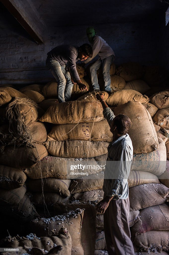Laborers pack sacks of cotton seeds at a cotton processing plant in Mathania, in the district of Jodhpur in Rajasthan, India, on Monday, Oct. 29, 2012. Cotton shipments from India, the world's second-largest grower, are set to tumble, forcing the government to make record purchases to stem a slide in prices. Photographer: Sanjit Das/Bloomberg via Getty Images