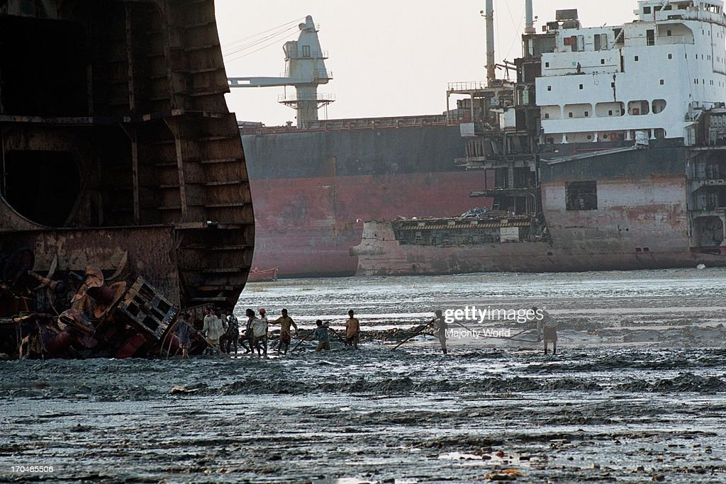 Labourers towing a cable to a 'halfcut' ship on the oily and polluted beach Bangladesh is dependent on its shipbreaking industry for 80% of its steel...