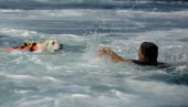 A labrador dog trained for rescue at sea swims with an instructor during a patrol at Riva dei Tarquini in the Tyrrhenian Sea about 100kms north of...