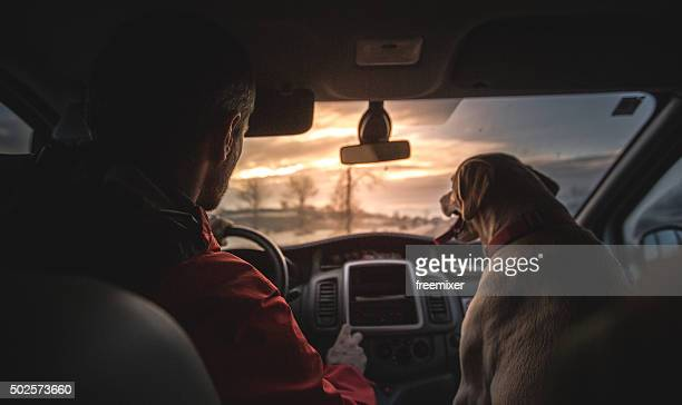 Labrador in the car on the front seat