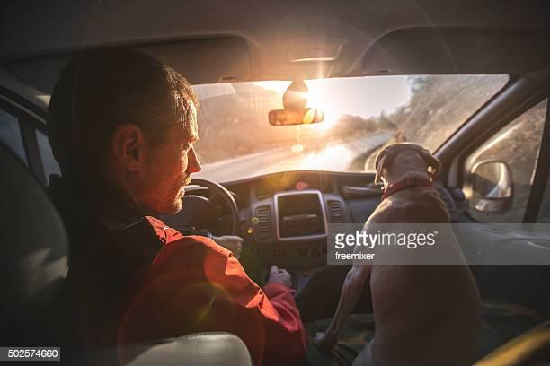 Labrador in auto sul sedile anteriore