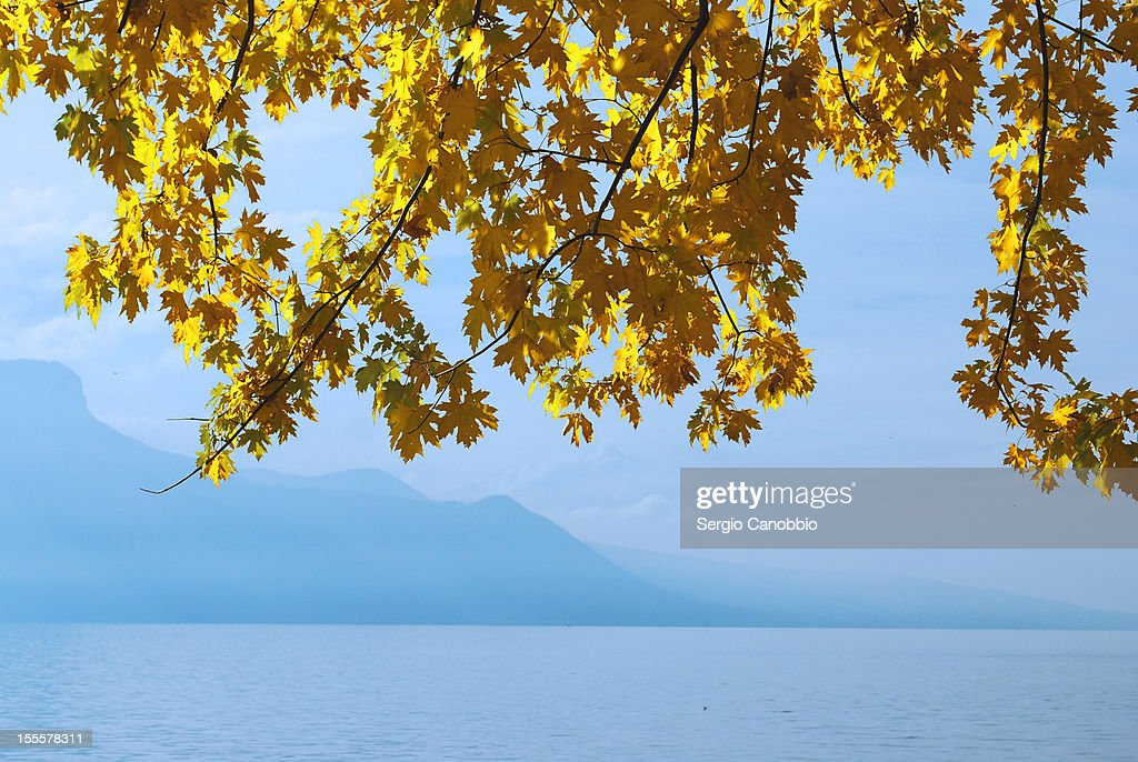Lac Leman in Autumn