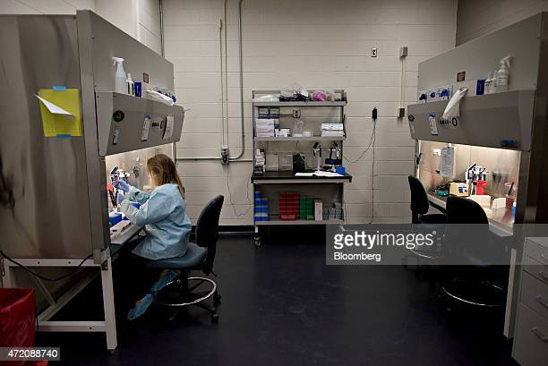 Lacey Kurth a research associate works with avian influenza test samples during testing in the realtime analytical diagnostics lab at the Iowa State...