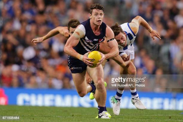 Lachie Neale of the Dockers looks to pass the ball during the round five AFL match between the Fremantle Dockers and the North Melbourne Kangaroos at...