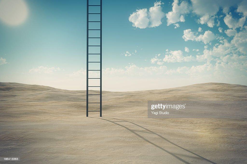 Ladder and desert