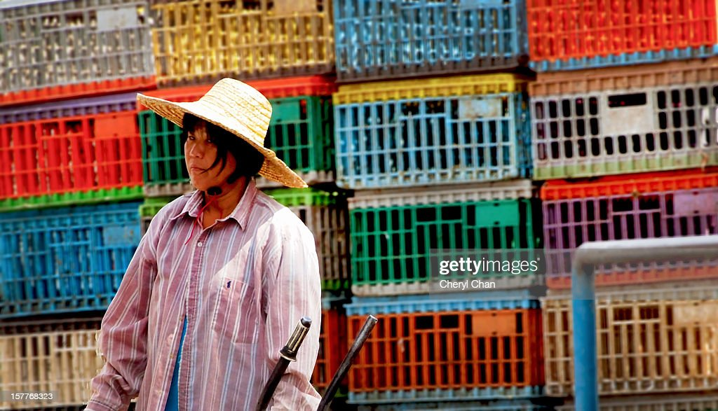 Lady at the market : Stock Photo