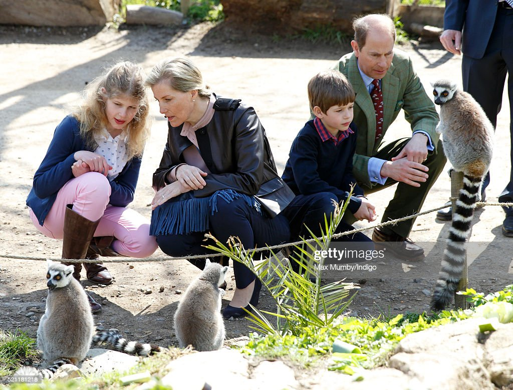 Lady Louise Windsor, Sophie, Countess of Wessex, James, Viscount Severn and Prince Edward, Earl of Wessex feed ring-tailed lemurs during a visit to the Wild Place Project at Bristol Zoo on April 14, 2016 in Bristol, England.