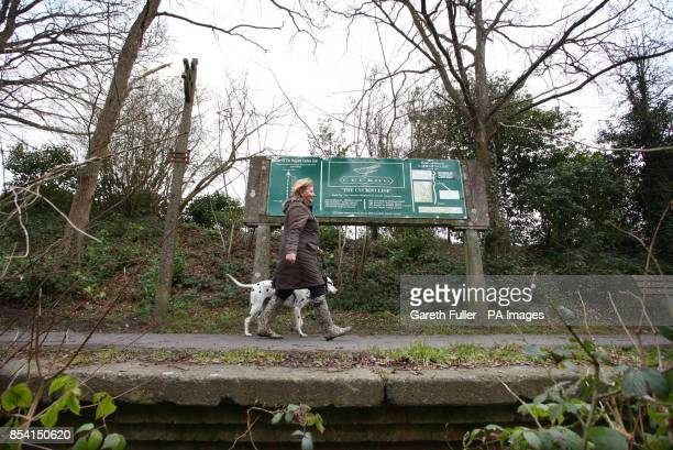 A lady walks her dog along what remains of the platform at the former Cuckoo Line railway station in Horam East Sussex As passenger numbers decreased...