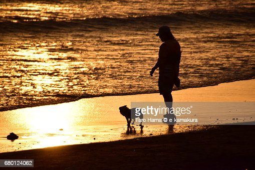 A lady with dog standing on the sunset beach : ストックフォト