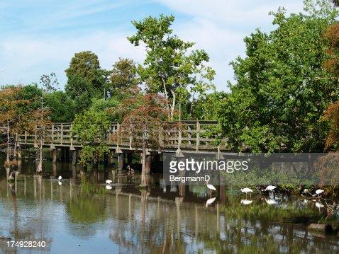 Lafreniere Park footbridge