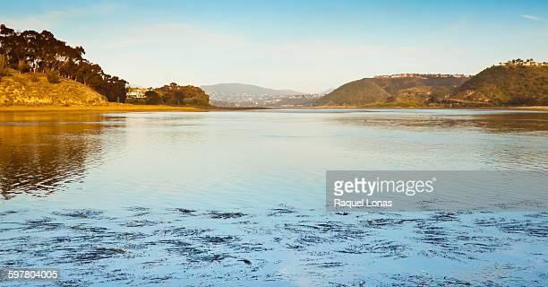 Lagoon in Southern California