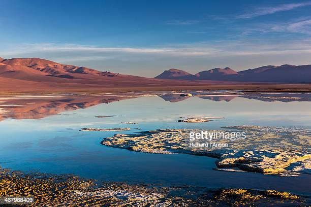 Lagoon on Atacama Salt Flat